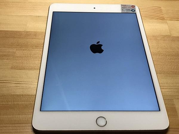 iPad mni4