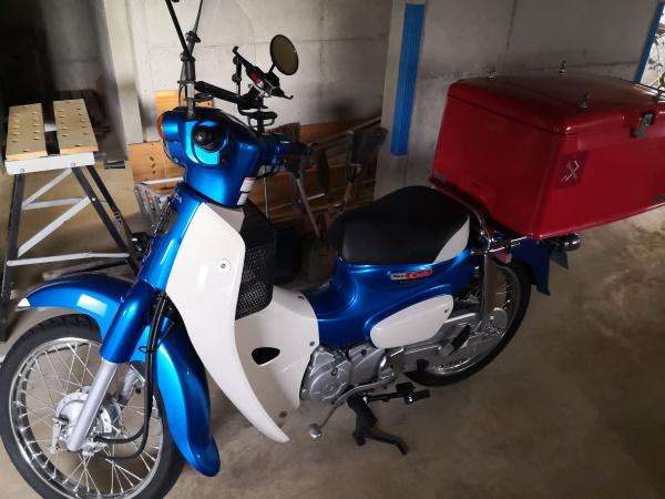 バイク 冬眠